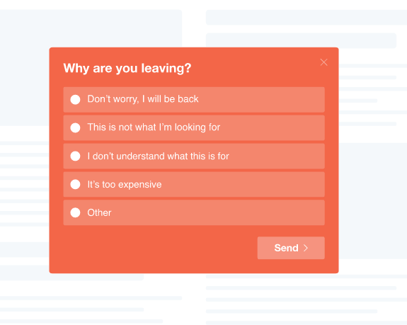 Exit Survey Widget