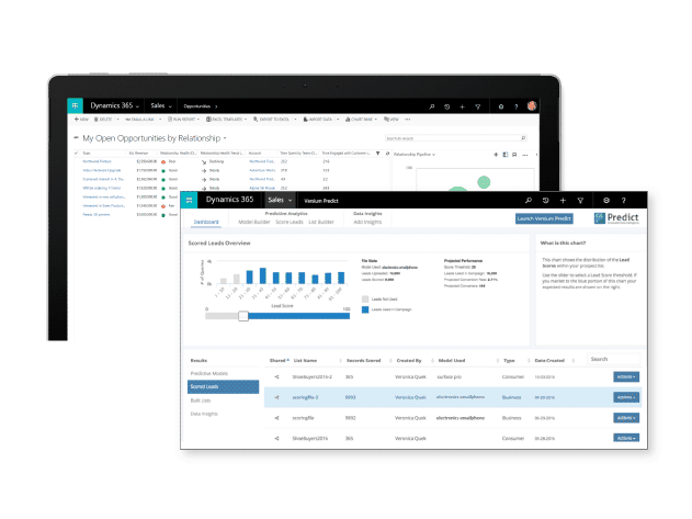 Microsoft Dynamics Sales report