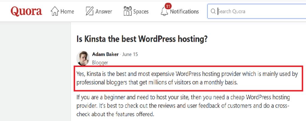 kinsta hosting - disk space - developer friendly -