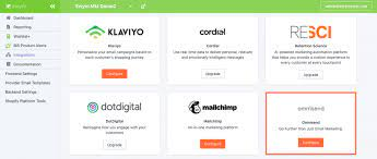 Ecommerce Marketing Automation with Just 2 Clicks through Omnisend 5