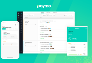 Paymo Review- Dead Simple Project Management Software for Small Business 1